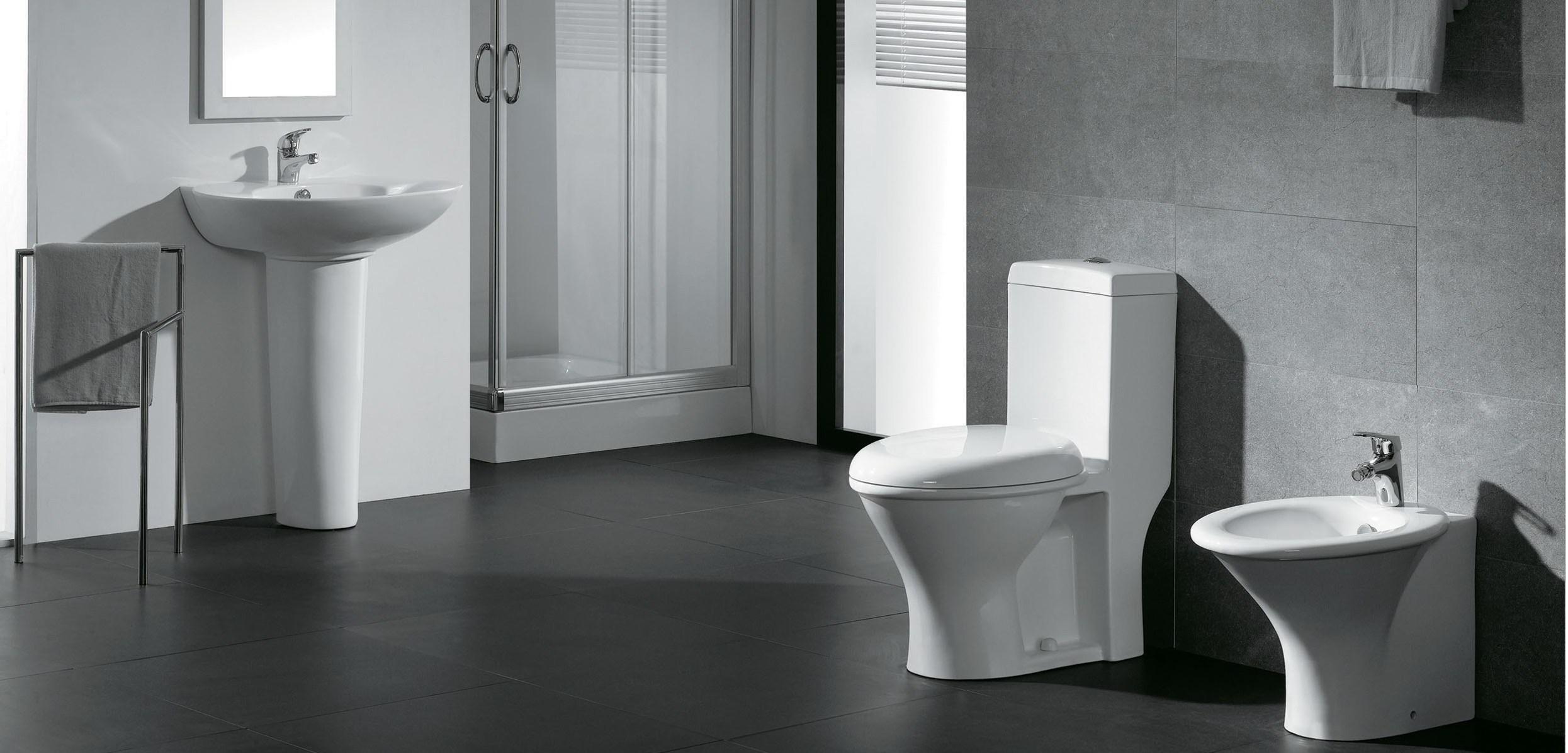 sanitary2